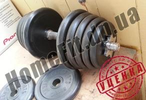 125 кг блинов и гантели 2х20 кг (УЦЕНКА - Б/У) купить в Житомире и Ирпени