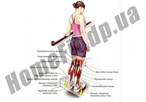 Доска для стретчинга Pro Supra 7320: фото 8