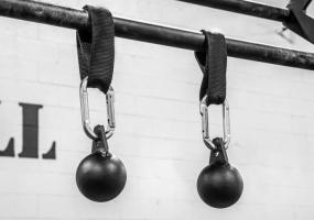 Шары для подтягиваний Canon balls: фото 1
