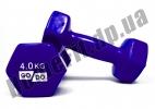 Гантели для фитнеса GoDo 4 кг