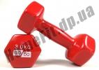 Гантели для фитнеса GoDo 3 кг